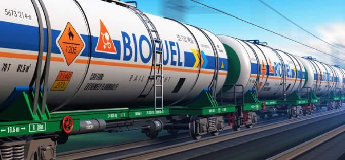 Biofuel storage