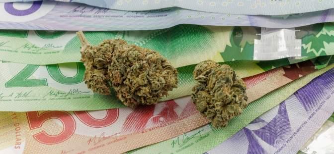 Cannabis buds on Canadian money