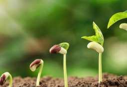 Verde Potash PLC - Verde AgriTech pushes greener potash saying farming must change
