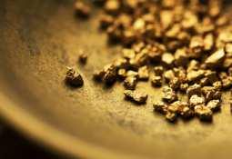 Bardoc Gold Ltd - Bardoc Gold Ltd 'has potential to be Australia's next mid-tier gold producer'