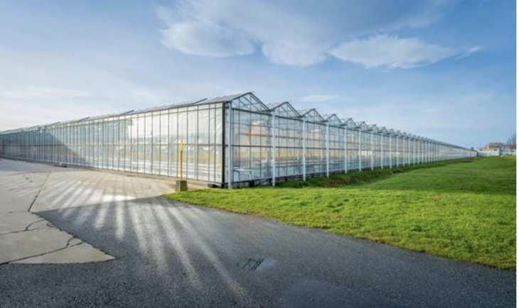 AgraFlora Organics receives Health Canada cultivation license for Delta facility
