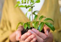 Danakali Ltd - Danakali Limited reveals its first sustainability report