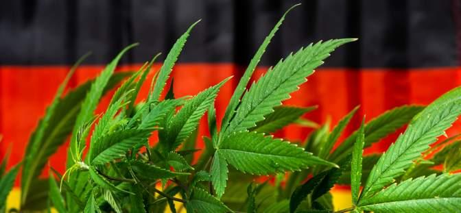 Cannabis and the German flag