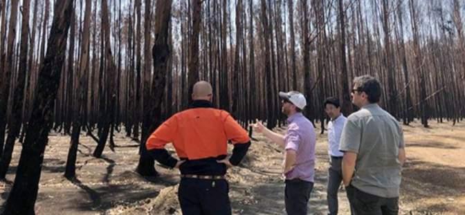 Kangaroo Island Plantation Timbers Ltd - Kangaroo Island Plantation Timbers receives further $19.6 million insurance progress payment