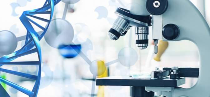 4D pharma plc -