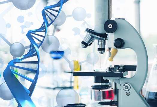 Algernon Pharmaceuticals enrolls final patient in Phase 2b/3 human study of Ifenprodil