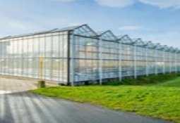 AgraFlora Organics International Inc. -
