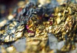 Fury Gold Mines -