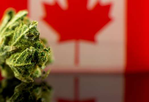 Creso Pharma Ltd - Creso Pharma's subsidiary Mernova Medicinal Inc to expand operations to target the growing Canadian hash market