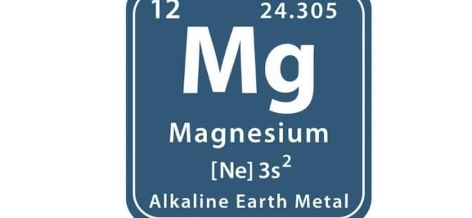 Western Magnesium Corp. -