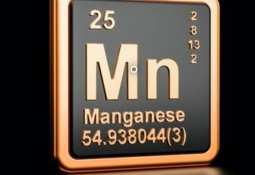 American Manganese Inc. -