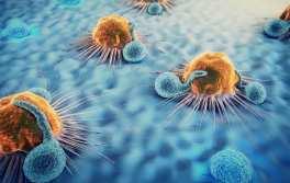 Pharmaxis Ltd - Pharmaxis enrols first patient in its bone marrow cancer trial