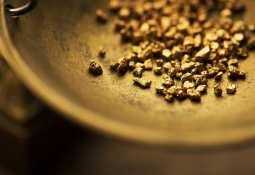 Pacton Gold Inc. -