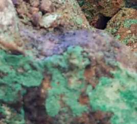 Phoenix Copper Ltd - Phoenix Copper Ltd updates investors on Empire copper-oxide open pit