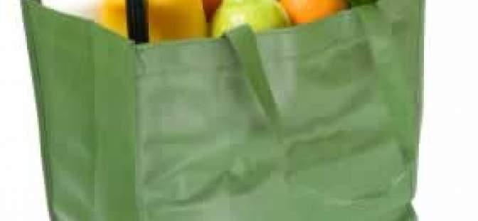 shopping_bag_350_5512b9b7af20c.jpg